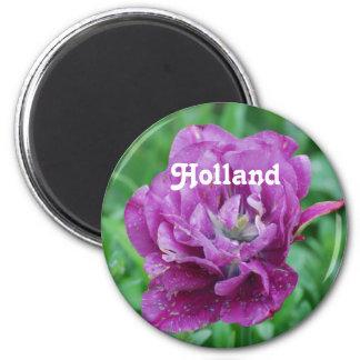 Tulipanes de Holanda Imanes