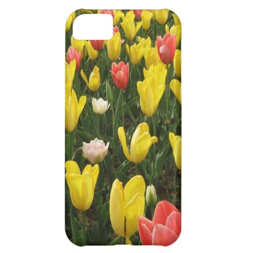 Tulipanes de Holanda, primavera en Keukenhof