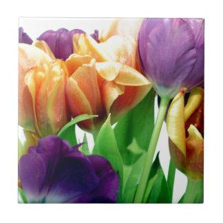 Tulipanes de la mandarina y de la lavanda azulejo cuadrado pequeño