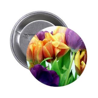 Tulipanes de la mandarina y de la lavanda pin