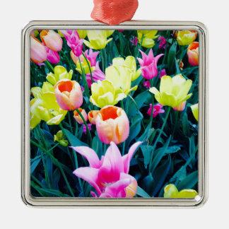 Tulipanes de la primavera en el parque cuadrado de adorno cuadrado plateado