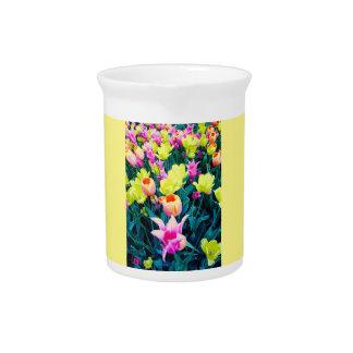 Tulipanes de la primavera en el parque cuadrado de jarras de beber