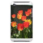 Tulipanes de la primavera iPod Case-Mate cárcasas