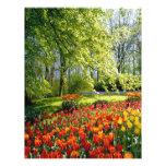Tulipanes de la primavera membrete