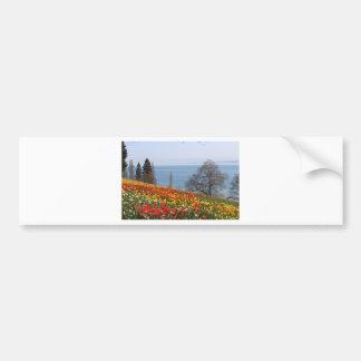 Tulipanes de la primavera por el mar pegatina de parachoque