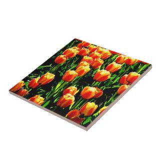 Tulipanes de la sol teja cerámica