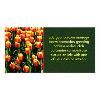 Tulipanes de la sol tarjetas fotograficas personalizadas