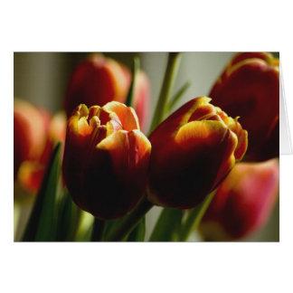 Tulipanes de las pastillas de caramelo tarjeta de felicitación