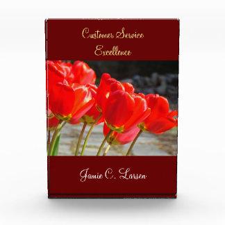 Tulipanes de las placas del premio a la excelencia