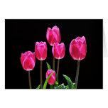 Tulipanes de las rosas fuertes felicitaciones