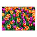 Tulipanes de neón Notecard Felicitacion