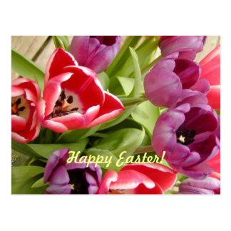Tulipanes de Pascua adaptables Tarjeta Postal
