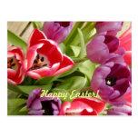 Tulipanes de Pascua adaptables Tarjetas Postales