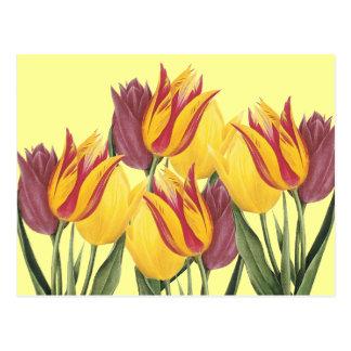 Tulipanes de Pascua Tarjetas Postales