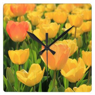 Tulipanes del amarillo anaranjado por reloj cuadrado