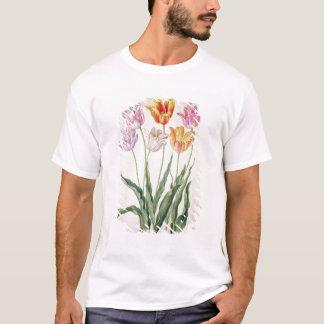 "Tulipanes, del ""Florilegium de Nassau"" (w/c en Playera"