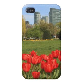 Tulipanes del jardín público de Boston iPhone 4 Cárcasa