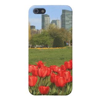 Tulipanes del jardín público de Boston iPhone 5 Carcasas