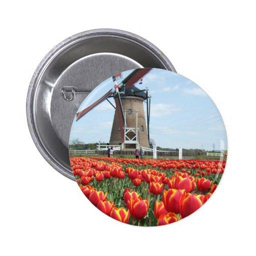 Tulipanes del molino de viento pins