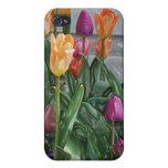 Tulipanes del plástico iPhone 4 fundas