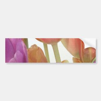 Tulipanes del rosa y de la lavanda pegatina para auto