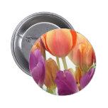 Tulipanes del rosa y de la lavanda pins