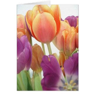 Tulipanes del rosa y de la lavanda tarjeta de felicitación