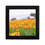 Tulipanes del valle de Skagit Cajas De Joyas