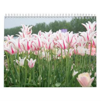 tulipanes durante todo el año 2016 calendario