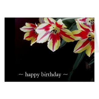 Tulipanes elegantes de las tarjetas de cumpleaños