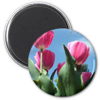 Tulipanes elevados imán redondo 5 cm
