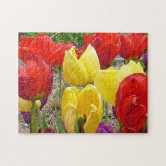 Tulipanes en el rompecabezas del jardín