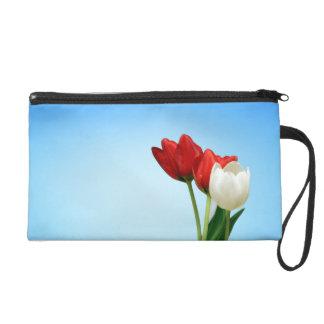 Tulipanes en fondo azul