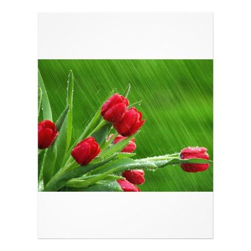 Tulipanes en la lluvia membrete