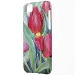Tulipanes en rojo y rosa