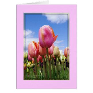 Tulipanes en The Sun - tarjeta en blanco
