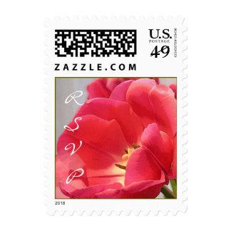 Tulipanes fantásticos del boda - pequeño cuadrado sello
