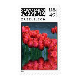 Tulipanes flooded.jpg - modificado para requisitos sello