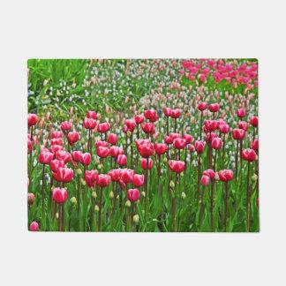 Tulipanes hermosos en la floración felpudo