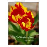 Tulipanes hermosos tarjetas