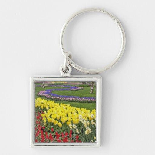 Tulipanes, jacinto de uva, y narcisos, llaveros
