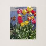 Tulipanes multicolores CAM00235.jpg Rompecabezas