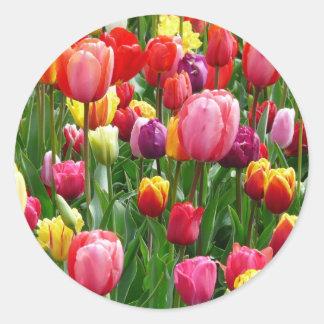 Tulipanes multicolores pegatina redonda