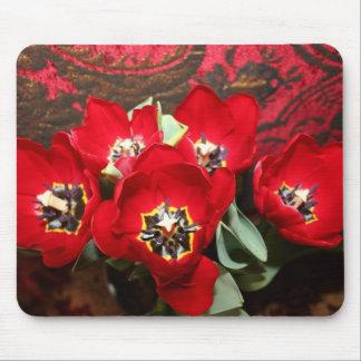 Tulipanes para usted alfombrillas de ratón