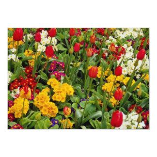 Tulipanes, pensamientos, margaritas y flores rojos anuncios