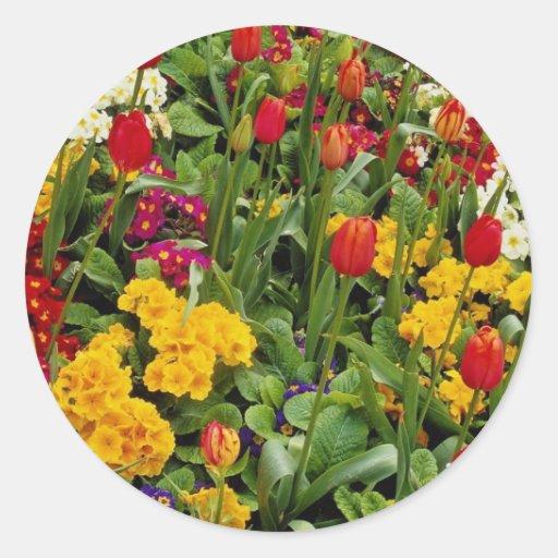 Tulipanes, pensamientos, margaritas y flores rojos etiquetas redondas