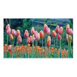 Tulipanes Plantillas De Tarjetas Personales
