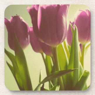Tulipanes Posavaso