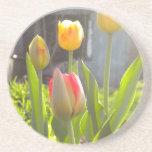 Tulipanes Posavasos Diseño
