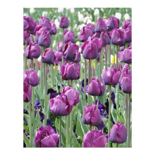 Tulipanes púrpuras del paraíso tarjeta publicitaria